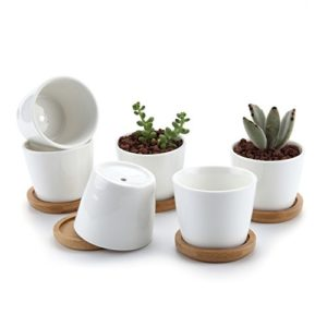 3 inch White Cylindrical Ceramic Planter Pack